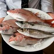 山口県・萩や石川県・能登から直送された季節の鮮魚介を使用