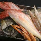 味わい深く、ヘルシーな肉質が特徴『ピエモンテ産仔牛「ファッソーネ」の炭火焼』