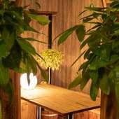 【個室】庭園の隠れ家個室