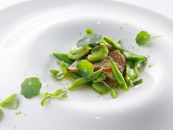 岐阜の食材を中心に『岐阜フレンチ』を楽しめるコース