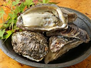 確かな目利きで仕入れる新鮮さにこだわった「牡蠣」や「魚」