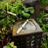 つくばいを配した、本格的な日本庭園