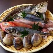 季節にあわせ、そのときどきの旬の魚介類を、鮮度のよいものを厳選して仕入れています。その日入荷しているものなら、寿司以外にも焼き魚、煮つけなど、好みの料理をリクエストすることが可能です。
