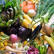 福島県大玉村や保原町などの契約農家から、有機野菜を厳選仕入れしています。魚介類は天然ものを中心に地場の魚屋の他、釣り師から直接仕入れることも。肉類も会津地鶏など主に県産や東北の食材を使用しています。