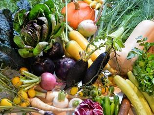 福島県大玉村の契約農家から仕入れている旬の「有機野菜」