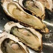 南三陸産の牡蠣入荷しております 濃厚でクリーミーな味わいは今だけ! お酒との相性も◎です♪