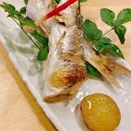 その日に仕入れた旬の鮮魚を取り入れております。 仕入れにより毎日内容が異なります。