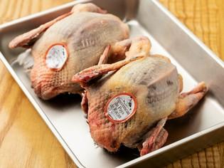 最高級の鳩肉の産地、フランス・ラカン産の鳩