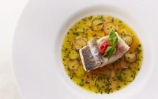 【ベーシックランチ】銀座の隠れ家で味わう現代×古典フレンチ!旬を体感する前菜や魚料理など全7皿ランチ