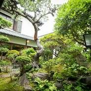 手入れの行き届いた日本庭園を眺めながら創作フレンチが堪能できる【The 華紋】。四季折々の姿を見せる庭園とシェフが織りなす季節の料理に囲まれ、満ち足りた時を過ごせます。