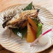 例えば、銀ダラが美味しい季節に欠かさない一品『銀ダラの西京焼き』。香ばしさと優しい味わいで、銀ダラの味を引き立ててくれます。お酒にもご飯にも合う料理が提供されます。
