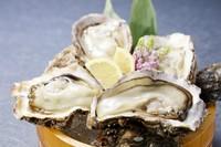 ぷりっとした食感と濃厚な風味にとろける『能登の岩牡蠣』