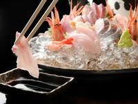 【はち丸】で必ず食べてほしい! 旬の海の幸が集う『刺し盛り』