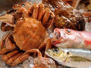 北陸の海の幸が勢揃い。地物の旬魚介を最上の美味しさで届ける