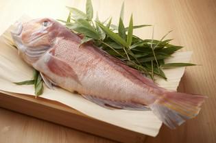 水深の深さと魚の豊富さで知られる、富山湾の新鮮魚介