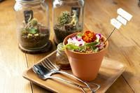 圧倒的なオーダー率を誇る看板メニュー『gardeん特製 植木鉢サラダ』