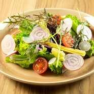 LAVE菜園風サラダ 3種類の選べるドレッシング