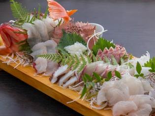 天草の栄養たっぷりな海域で育った魚は新鮮そのものでどれも絶品