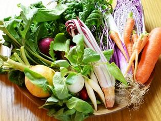 ストレスフリーで育てた「Kふぁーむ」の食材と地元の無農薬野菜