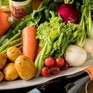 春夏秋冬の彩り豊かなオーガニック野菜は、地元 愛知県をはじめ近郊の農家へ直接訪問して厳選仕入れ。無農薬の自然栽培で育った元気な野菜たちの、素材本来の味わいにきっと感動するはずです。