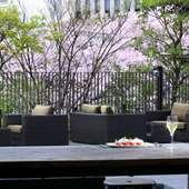 春には桜を愛でながら食事を楽しめる、心地良いテラス席も人気
