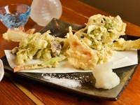 味なサプライズ!旬の素材になにかしら一手間加える工夫が楽しい『山菜の天ぷら』