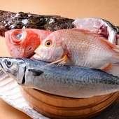 日本各地から仕入れた「厳選食材」を心行くまで堪能する