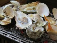 圧倒的、満足感の海鮮バーベキュー食べ放題。真牡蠣もサザエもはまぐりも一切制限無し。