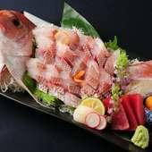 当日仕入れの新鮮で大振りな鯛を味わう『鯛の姿造り』
