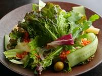自家製ツナ・塩ダラを使ったミックスサラダ