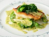 柔らかく旨味たっぷりの『仔羊スネ肉のシェリービネガーと白ワイン煮込み』