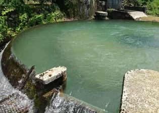 この地に生きるものたちの源である、魚津の地下水を使用