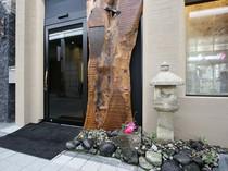 シックな扉に躍動感のある木を合わせた印象的なエントランス