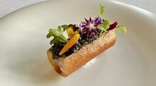 Menu Regaloメインは肉・魚どちらも堪能!美食の全7品ディナー