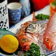 当店の自慢は、なんといっても産地から直接届く新鮮な魚介!