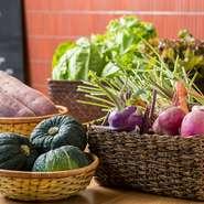 店で使われる野菜は、オーナー自ら菅平高原から調達してくる採れたて野菜や、小川村で身内の農家が生産する無農薬野菜が中心です。近隣の青果店で仕入れるものも、旬にこだわって厳選されています。