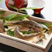 京野菜・旬菜は、瑞々しさを大切に京都で栽培されている物を中心に買い付けします。また、海の幸は市場で直接買い付けることで、旬のタイミングを逃さずキャッチ。和食に合う牛肉や鴨肉も積極的に取り入れています。