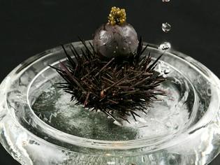 贅沢な美味をふんだんに用いた、美しく光る『黒い真珠』