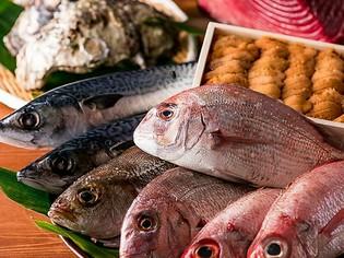 店主が毎朝仕入れる質の高い新鮮な魚介を、リーズナブルな価格で