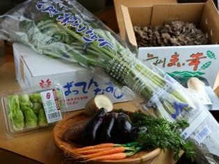 豊洲で仕入れる珍しい野菜や、茨城の畑から届く新鮮な旬素材