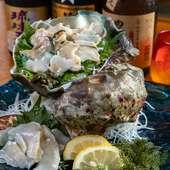 迫力満点の大型巻き貝。食べごたえのある食感を楽しめる『夜光貝一皿』