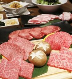 ランチタイム限定!【ウシハチ】からコスパ抜群のコース登場です! 牛骨スープ&白ご飯お代わり自由!