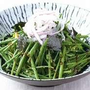 サラダ用の早取りねぎを使用し、あっさりとした和風ドレッシングと甘みのあるみそたれ、ゴマドレッシングでサラダに仕上げました。