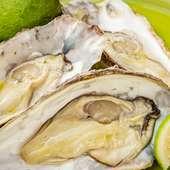 広島県産 殻付き牡蠣