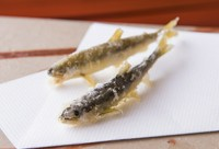 季節のお野菜、その日おすすめの魚介類を存分にお楽しみいただけるコース