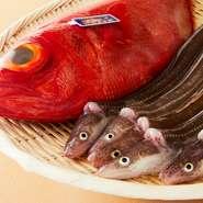 豊洲より仕入れた天然魚を熟成し、しっかりと修業を積んだ職人が握る本格江戸前握りです。